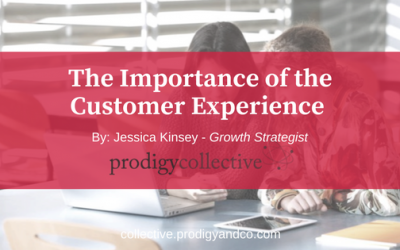 The Importance of the Customer Experience